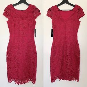 NWT Lulus Magenta Lace Bodycon Dress
